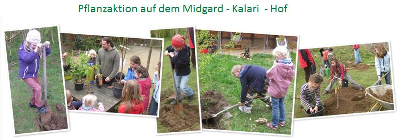 Pflanzaktion auf dem Midgard - Kalari  - Hof