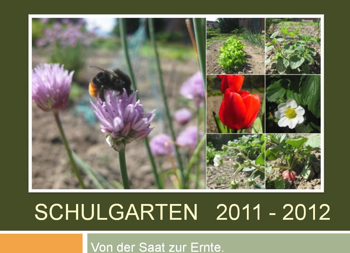Schulgarten%20Startseite.png